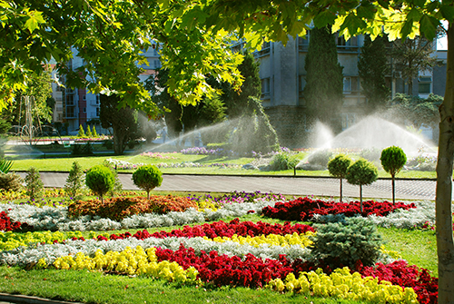 City square. Sprinkler system is watering the lawn.